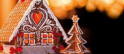 beautiful gingerbread house decorated with frosting