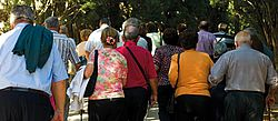 Older people walking in a park, Senior Adult, Crowd, Old, Walking, Tourist