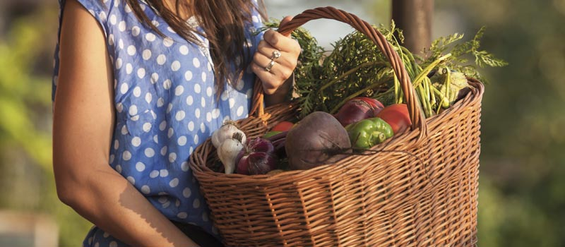 A young attractive woman with healthy Fresh Organic Vegetables in the Basket